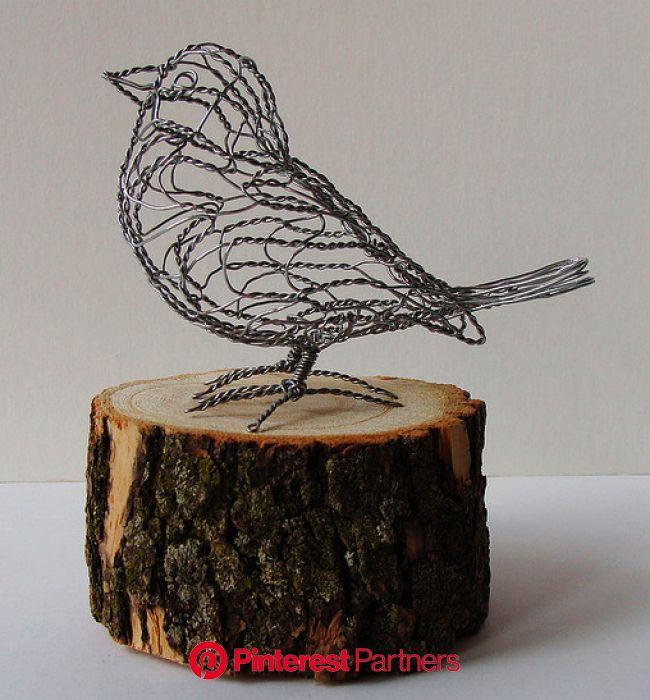 Make_A_Wire_Bird | Chicken wire crafts, Chicken wire sculpture, Wire art sculpture