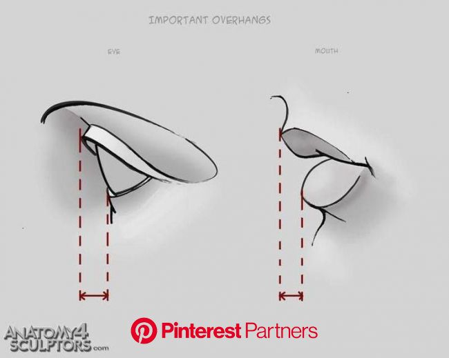 Art Tutorials/References Dump | Drawing tips, Art tutorials, Design reference