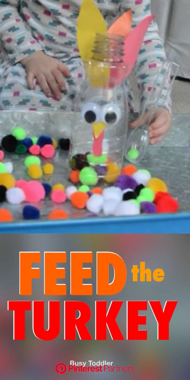 Will your toddler Feed the Turkey? [Video] [Video] | Autumn activities for kids, Easy toddler activities, Toddler learning activities