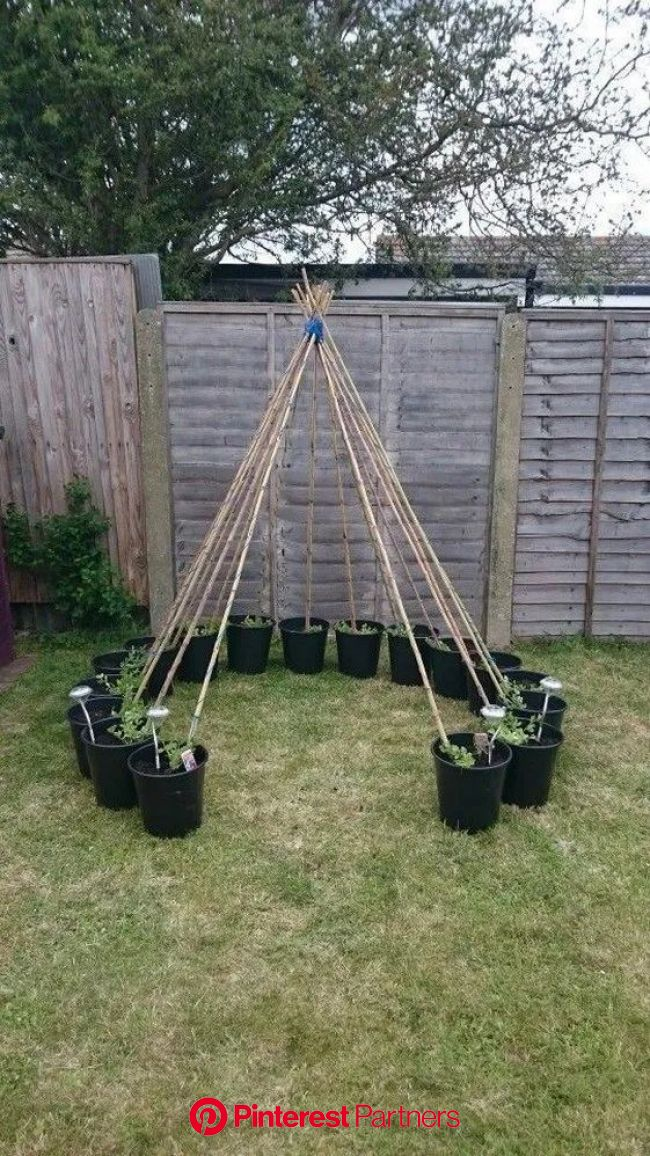 51 Summery Diy Backyard Projects Ideas Diy Backyard Incorporate A Vegetable Garden A Bean Tepee Makes A Wonderful Hiding Place Fo In 2020 Wood Decor 2019 2020