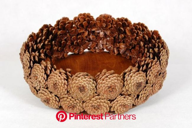 Pinecone bowl #pineconecraft,  #bowl #jardimCriativo #Pinecone | Noel elişleri, Kavanozda hediyeler, Yılbaşı elişi