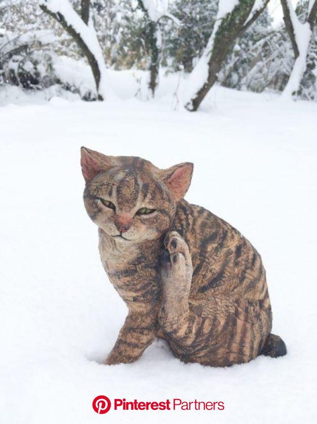 写真撮影OK!猫アート約1000体が百段階段に大集結「福ねこ展 at 百段階段」 | アート - Japaaan 日本文化と今をつなぐ | 猫 絵, キャットアート, 犬のアート