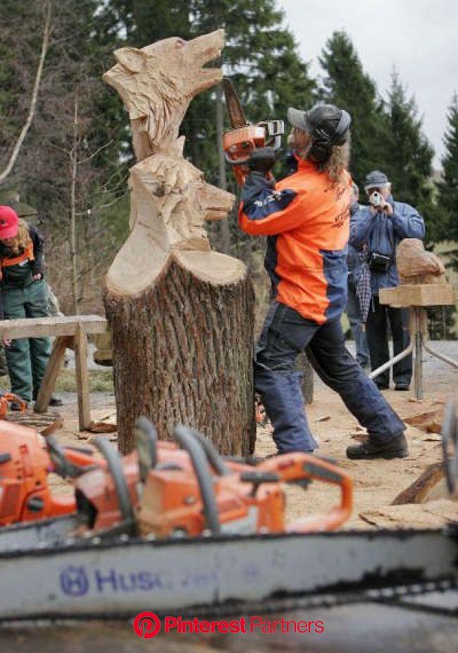 Der Sauensäger | Holz schnitzen, Baum-schnitzen, Kettensägekunst