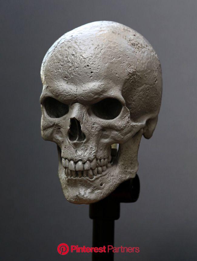 ArtStation - Miss Peregrine's Home for Peculiar Children / Skull Sculpt, Hatch Effects | Skull artwork, Skull, 3d art sculpture