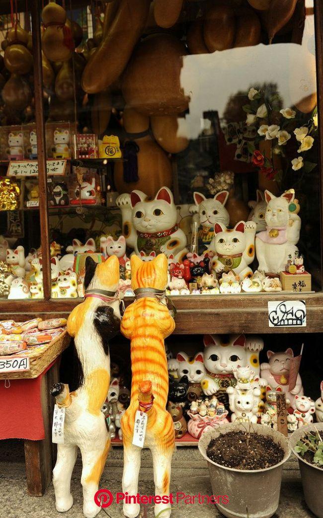 _DSC1879 | Maneki neko, Japan, Lucky cat