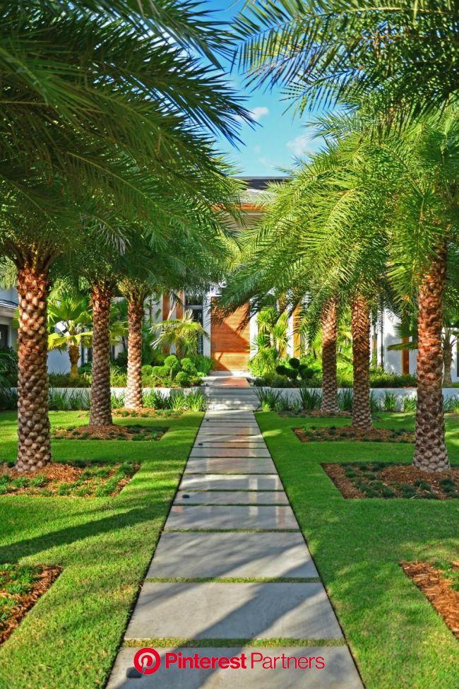 Search Viewer | Belos jardins, Jardins contemporâneos, Jardins modernos