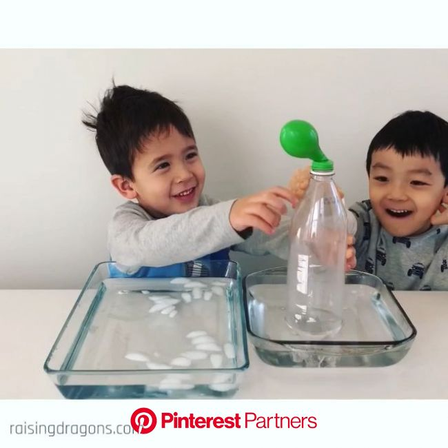 Fill the Balloon Science Experiment * ages 3+ [Video] | Science experiments kids, Balloon science experiments, Kid experiments