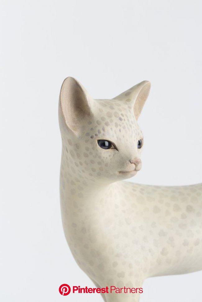 ???? 土屋仁応 / Yoshimasa T. on Twitter | Animal sculptures, Cat art, Art dolls