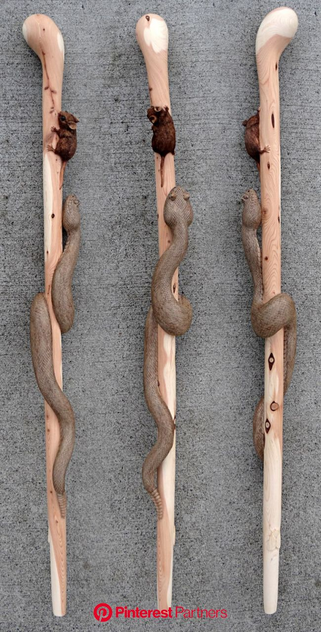 Pin on Hand carved walking sticks