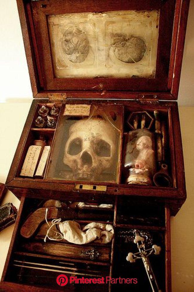 Pin by Jay Graham on History   Vampire, Creepy, Macabre