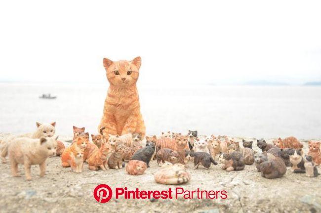 はしもとみおのナマケモノ日記 | 猫 絵, 動物の彫刻, ナマケモノ