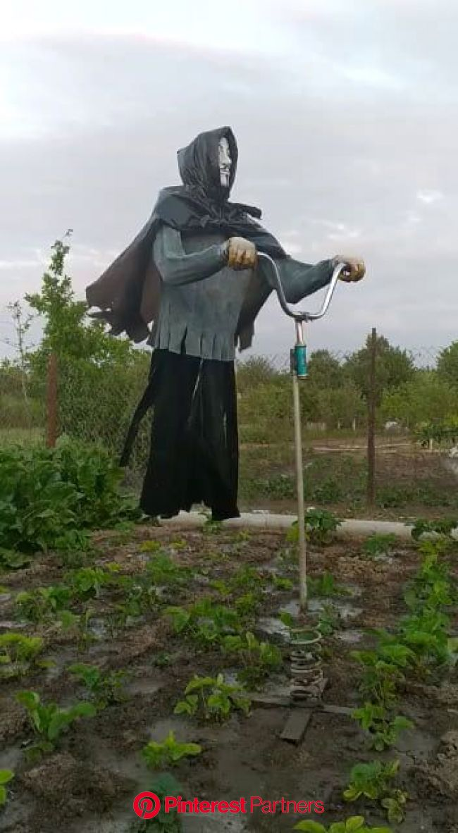 Scary stuff. | Garden projects, Scarecrow, Garden art