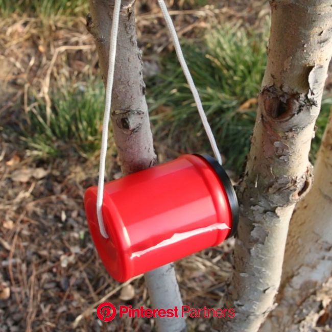 Go Anywhere Nature Calls With This Camper's Toilet Paper Dispenser [Video] [Video] | Diy life hacks, Easy camping hacks, Diy camping
