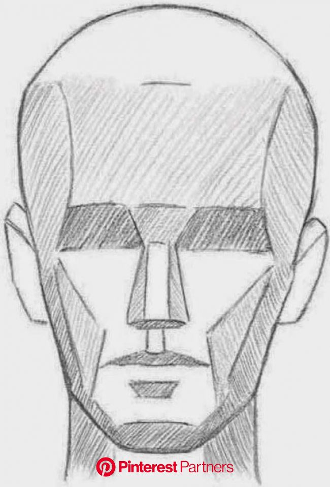 LEARNING THE PLANES OF THE FACE Once you understand the basic structure of the head, you can simpl… | Planes of the face, Drawing the human head, Huma